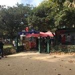 Fotografia de Jardim da Foz
