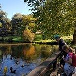 Savill Garden照片