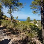 Bilde fra Ibiza Horse Valley