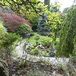 small quarry garden.