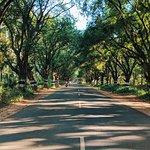 Pollachi Roads