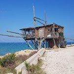 Billede af Riserva Naturale di Punta Aderci
