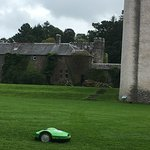 The lawnmower robot was fun to watch