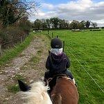 Castlefergus Equestrian照片