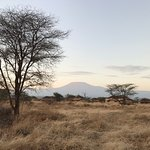 View of Kilimanjaro from our accommodation