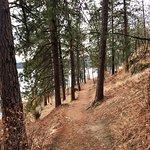 Foto de Tubbs Hill Nature Trails