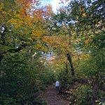 Billede af Ascutney State Park