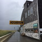 Seaside Aquarium의 사진