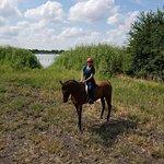 Foto de Chisholm Trail Rides