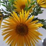 Table flower.