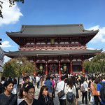 写真Japan Panoramic Tours枚