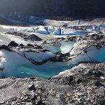 Photo of Alaska Guide Co