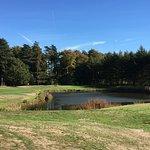 Foto di Forest Pines Hotel Golf Resort