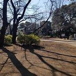 上野公園の写真