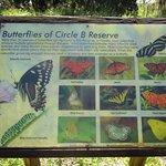 Billede af Circle B Bar Reserve