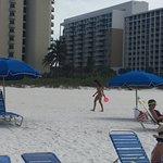 Фотография Hilton Marco Island Beach Resort
