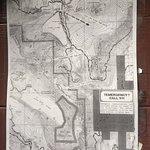 Billede af Mount Hood National Forest