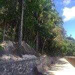 Zdjęcie Ruinas da Fortaleza do Tapirandu