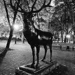 Photo de Sculpture Deer