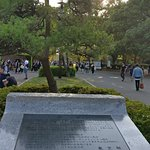 Foto di Parco Yoyogi