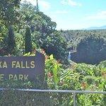 阿卡卡瀑布州立公園照片