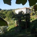 View of Villa Corti from vineyard