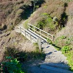 Kimmeridge Bay footbridge on footpath to beach