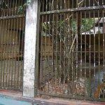 Yangon Zoo照片