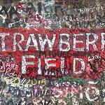 Foto de Strawberry Field