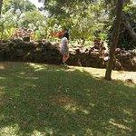 صورة فوتوغرافية لـ El Nispero Zoo and Botanical Garden