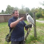 Foto van Forest Falconry