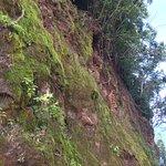 威庇歐山谷觀景點照片