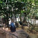 Sunway lagoon 😍😍😍😍