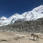 Bilde fra Nepal Eco Adventure
