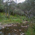 صورة فوتوغرافية لـ Morialta Conservation Park