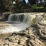 Haruru Falls, Paihia