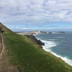 walking path to Cape Reinga lighthouse