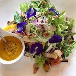 Фотография Seed to Feed Restaurant