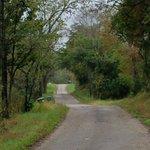 Foto de Cabins At Hickory Ridge