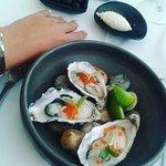Foto de Restaurante Terra Nova