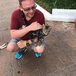 Feral cats everywhere and they can be quite friendly!