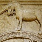 Fotografie: Museo della Cattedrale