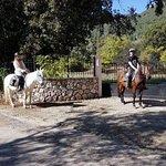 Φωτογραφία: Trailriders Horse Trekking