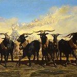 Loubon, troupeau en camargue, musée Granet