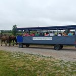 Our most popular group tour is a wagon ride through the Amish countryside, then a tour of the Mu