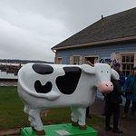 Photo de Cows Creamery
