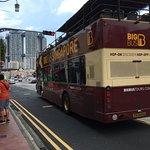 HiPPO Bus Sightseeing Tour照片