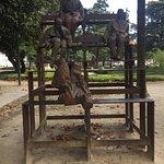 Foto di Jardim de Joao Chagas