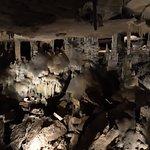 Raccoon Mountain Cavernsの写真