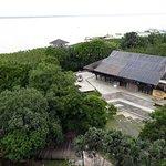 Vegetação e mirante do Rio Guamá.